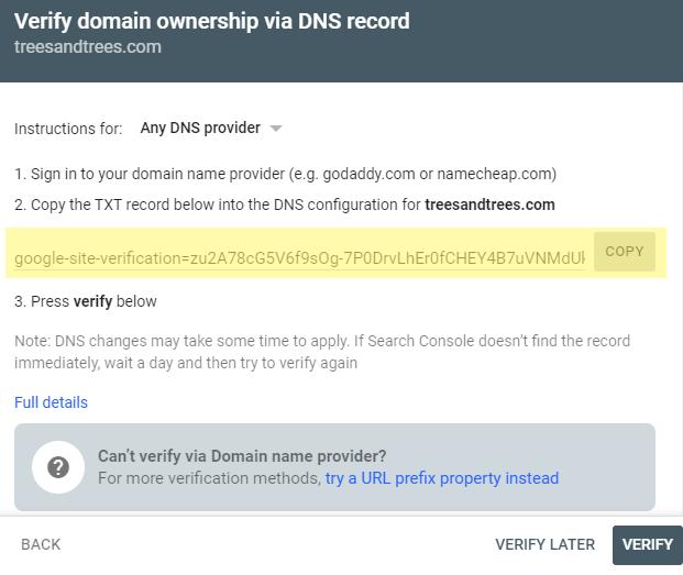 DNS-verification-code.png